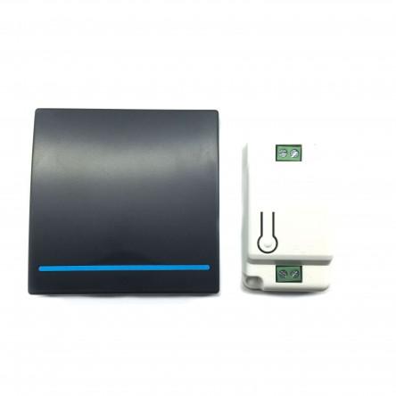 Беспроводной выключатель Inted 220V одноклавишный Черный