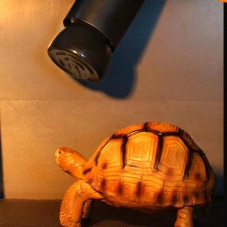 Керамическая инфракрасная лампа 100W E27 (для обогрева)