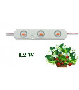 LED модуль для растений LH Light 1.2W 12V